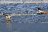 Kite surfeur sur plage