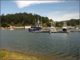 WB Commercial Fishing Harbor.jpg