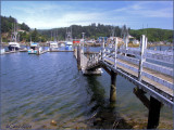 Boats at Dock Oregon.jpg