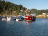 Fish Boats at Dock Winchester Bay.jpg