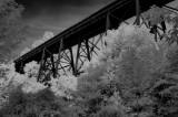 bridge in IR.jpg