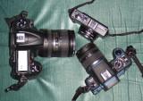 The cameras.jpg