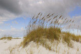 0003b: Gulf Islands National Seashore