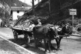 1947 Austria