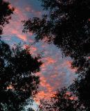 Sunrise back porch 1.jpg