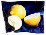 limones-pollaroid 001.jpg