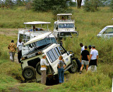 Bogged down Safari