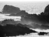 Punta de los Lobos Marinos