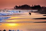 Brenu Beach 16