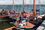 Turf Boats