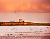 Martello Tower 5