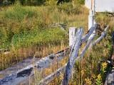 Li'l Dave's fence