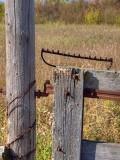 Fences 9268742