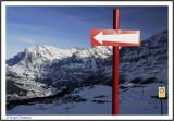 SWITZERLAND  - BERNESE OBERLAND - GRINDELWALD