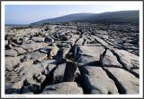 IRELAND - THE BURREN - MARCH 2009