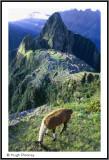 PERU - MACCHU PICCHU