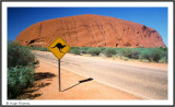AUSTRALIA - ULURU FROM SUNRISE VIEWPOINT
