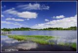 Ireland - Co.Fermanagh - Roslea