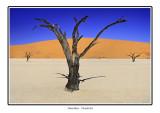 NAMIBIA - APRIL2005