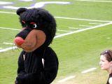 UC Mascot