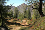 A wonderful wander day ..