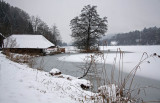 Rotsee in winter