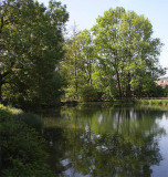 Spring, and sitting on a quiet pond