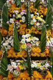 Flower garlands --offer for Buddha