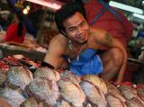 happy fishmonger