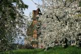 A flower house