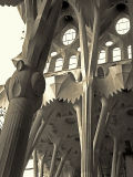 concrete forrest --The unfinished east wing of La Sagrada Familia
