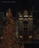 Biltmore With Christmas Lights #2