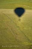 Balloon Shadow on Pasture