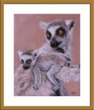 lemur 01.jpg