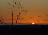 Sunset and Barbed Wire