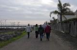 Walk to the Levee