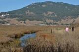 Creek and Walkers