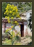 Sicily - Lo Zingaro Nature Reservation