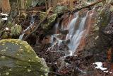 Woodland Falls - Wider View