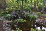 Rod's Woodland Pond