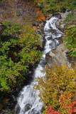 Whiteoak Canyon Falls #1