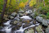 Shenandoah Stream