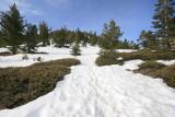 more snow.jpg
