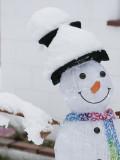 Snowy Snowman.jpg