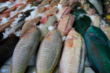 Fish at Papeete Market