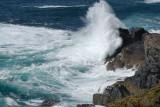 wild sea on Gurnard's head