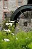 Buckfast Abbey - watrmill