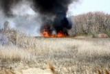 20080424_milford_ct_marsh_fire_silver_sands-01.JPG