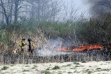20080424_milford_ct_marsh_fire_silver_sands-09.JPG