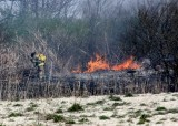 20080424_milford_ct_marsh_fire_silver_sands-10.JPG
